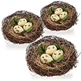 com-four 3X Nido de pájaro Decorativo con Huevos,...