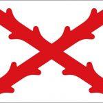 Bandera de aspas de Borgoña, Virreinato de Nueva España