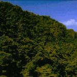 Acantilado de una de las islas