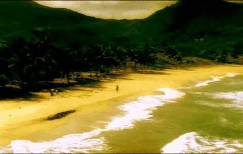 Visitante de una playa virgen