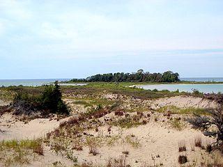 Isla en el Lago Michigan