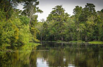 Paisaje de Estado de Louisiana, y su rio