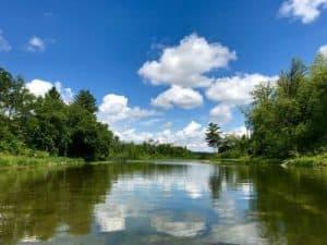 Paisaje de Estado de Minnesota, orillas del rio