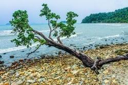 Paisaje de Estado de Rhode Island, costa y playa