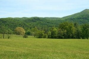 Paisaje de Estado de Tennessee, pradera y bosque