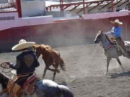 US: ¿Cuándo y dónde fue el primer Rodeo en Texas? 1