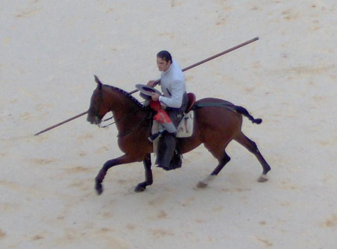 Rejoneador a caballo con pica