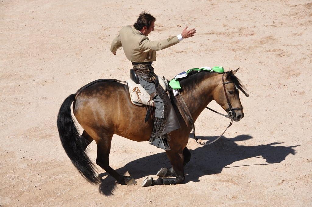 Un rejoneador exhibe su dominio del caballo