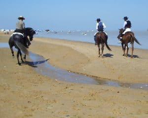 Grupo de jinetes españoles cabalgando por la playa