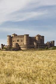 Trigo alrededor del Castillo de Belmonte
